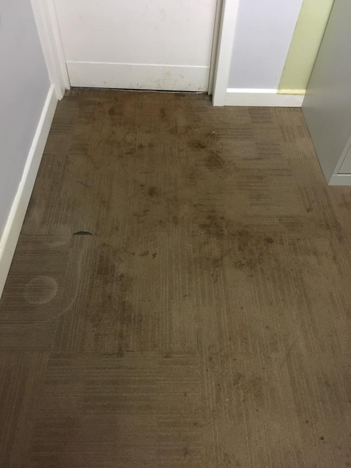 Stain Before